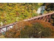 黒部峡谷 猿飛峡の紅葉