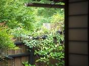 柊の間:お庭イメージ