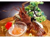 【別注料理】イセエビの御造り  海老の王様といえばやっぱり高級食材《イセエビ》プリプリの食感と甘み旨味がたまらない至高の一品です。御造りで存分にご堪能下さい。 ※写真はイメージ ※南イセエビ使用