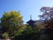 神社仏閣が点在する塩田平。紅葉と合わせてお楽しみくださいませ。
