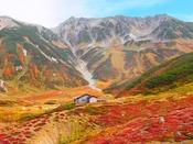 【秋の立山黒部アルペンルート】九月中旬~十月下旬が紅葉の見頃となっております。