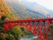 【秋の黒部峡谷鉄道】10月中旬から11月中旬が紅葉の見頃となっております。