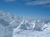 青空に映える真っ白な樹氷は一度は是非見たい景色です。