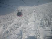 ロープウェーに乗って、樹氷見学へ。
