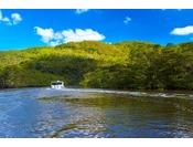 島の約90%が亜熱帯の原生林に覆われ、島全体が国立公園に指定されている西表島