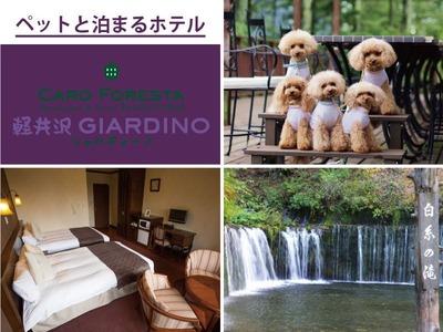 ペットと泊まる宿 CARO FORESTA 軽井沢GIARDIN...