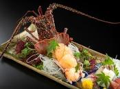 【伊勢海老姿盛りと豪華五点盛り】伊勢海老は濃厚な出汁の赤出汁としてご飯と一緒にご用意致します。