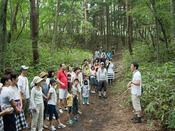 【午後の自然散策】朝の森林浴散策は、ベテランガイドが草津の森をご案内致します。14:00~15:30(終了時間には変動があります)