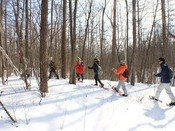 【スノーシュー散策ツアー】冬で条件の良い日には、午後の温泉街散策でスノーシューを使用いたします。この季節にしかできない貴重な体験ツアーです。