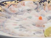 【とらふぐ薄造り】(冬季限定)高級食材でワンランク上の贅沢を…。
