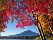 富士山(秋)
