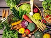 精進料理や山菜料理とも違う、自然の恵みにこだわる八景流。50種類以上の野菜で、おもてなし