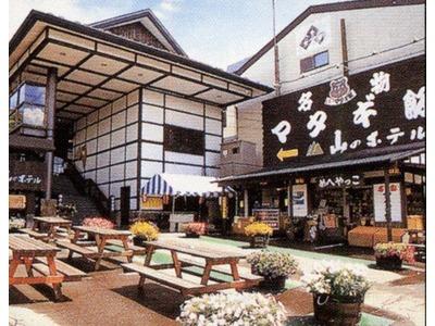 嶽温泉山のホテル