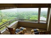榛名山側・赤城山側方が望める眺望自慢のお部屋。当館のお部屋の中でも人気が高く、6名様分のお布団が敷けます。Wi-Fi利用可能*バス・洗浄機付トイレ付