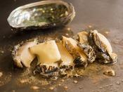 鉄板で焼いた新鮮な北海道産蝦夷鮑をご堪能ください