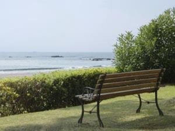ガーデンのベンチで海を眺める