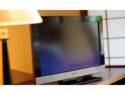 2010年4月7日「地上デジタルテレビ」を導入!プラス「ディズニーチャンネル」も見放題(無料)!