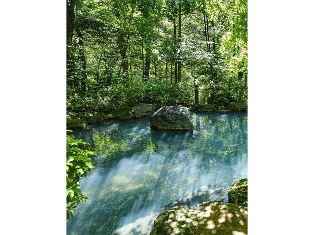 那須の御用邸の源泉と隣接した 大丸の沢に湧き出る自家源泉