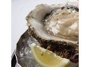 夏が旬の『岩牡蠣』