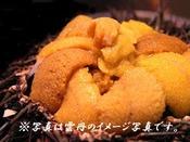 夏の味覚『殻雲丹』