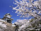 【当館から車約35分】金沢城石川門/開花の時期は兼六園・金沢城公園の無料開放がございます