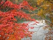 秋のドッコ沼周辺。紅葉色とエメラルドグリーンのコントラストが目を楽しませてくれます。