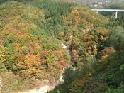 蔵王のキレイな紅葉を見にいっらっしゃいませんか?