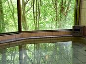 *【大浴場(男湯)】日本三美人の湯「龍神温泉」★良質な温泉でお肌がスベスベに♪
