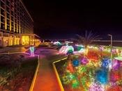 *【ライトアップ(一例)】色とりどりの光の中をお散歩してください♪