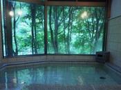 ≪貸切もOKのお風呂≫龍神温泉はヌルヌルとした化粧水のような、まとわりつく湯ざわりで湯上りスベスベ。