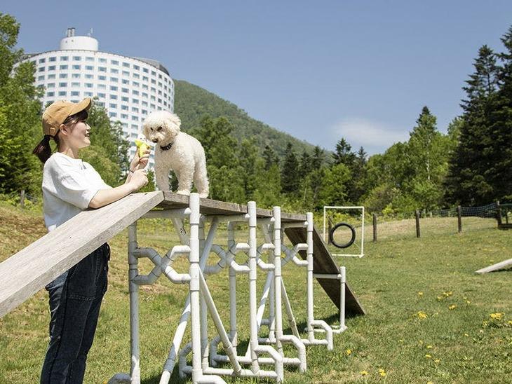 【Tポイント1%】【愛犬と一緒!朝食付】ドッグフレンドリー