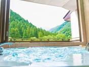 谷川岳を一面に望むジャグジー付き貸切風呂