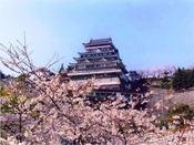 熱海城 さくら祭り(3月下旬~4月上旬)
