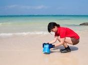干潟探検:干潟時に遠浅のリザンビーチを探索し、珍しい生物を観察したり自然を体感します。