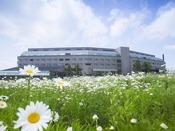 春になるとゲレンデに花が咲き、一気に春の景色になります
