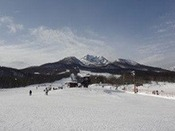 池の平温泉スキー場
