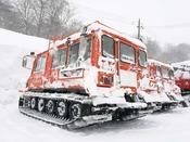 非日常を体験!誰もいないブナの森で雪上車でおもいっきり冬を満喫しよう!