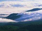 【周辺観光】八幡平山頂から見た夏の雲海