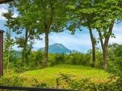 お部屋からは絶景の湯布院・そして由布岳が一望!日々の喧騒から離れのんびりお過ごし頂けます。
