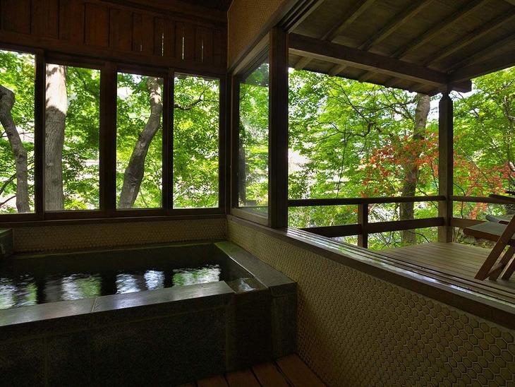 【Tポイント1%】【往年の浪漫がここに/山荘 露天風呂付き客室】美肌の湯と自然に癒される山荘滞在 <スタンダード>