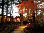 秋の日本庭園/紅葉は10月下旬~11月上旬