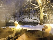 冬の露天風呂で雪景色を堪能
