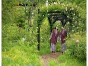 イングリッシュガーデン風の庭の中にあるパーゴラです。バラの咲く季節に散策をしてみてはいかがでしょうか。
