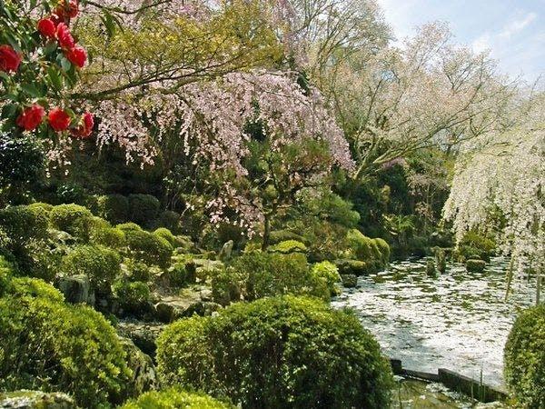 春の竹林院群芳園