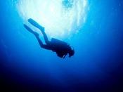 【ダイビング】奄美大島でしか見れない「海底のミステリーサークル」など、美しい世界をのぞく。※9月1日グランドオープンにつき、現在使用している写真はイメージになります。