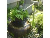 風流な日本庭園・・・極みの家