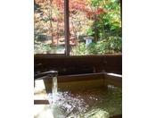 檜風呂から臨む四季折々の自然・・・陽だまりの家