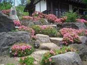 四季折々の花が咲き誇ります