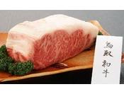 鳥取和牛(イメージ)