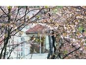 ホテル外観 春(7)